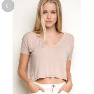 BRANDY MELVILLE Alayna light blush pink crop top